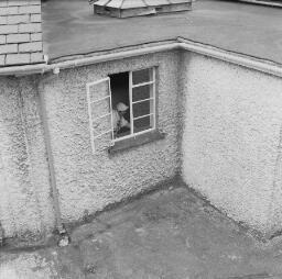 Sylvia Ann Jones - Ann Pritchard, Wynne Road, Plas Weunydd Park Flowers - Maenofferen Schools - Septemeber 1969 thumbnail
